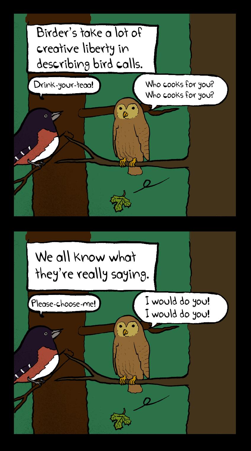 Bird Cat Calls
